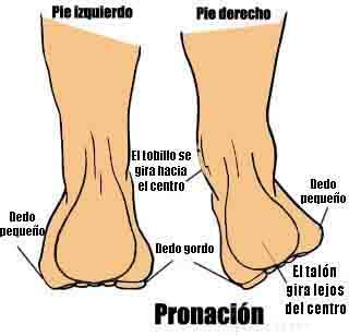 pronasion